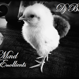 DJ Viccro  - Mind Emollients