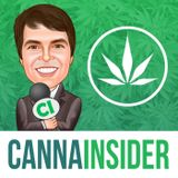 Ep 107: State by State Look at Cannabis Legalization with Kris Krane