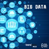 Trendware No. 20 - Big Data