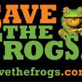 Save the frogs - in conversation with Kerry Kriger