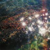 Finckobot - Translucent On The Dancefloor (June 2013)