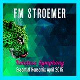 FM STROEMER - Timeless Symphony Essential Housemix April 2015 | www.fmstroemer.de