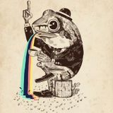 toad drak psy mix
