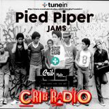 Pied Piper - DISCO POLICE 10 (Crib Radio Live SET)