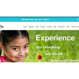 Browser Based Behavioral Health EHR: Checkpoint by Integrity Support