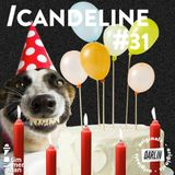 Candeline // Timmerman X Darlin #31