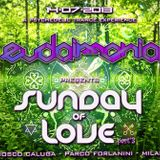 """Lost In Chillout - """"Sunday Of Love 3"""" Forlanini Park Milan - 14072013 - Part 1"""