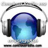 JOE UPRISING on CONCIOUS RADIO 29.11.2013