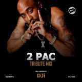 2 Pac Tribute Mix [@DJiKenya]