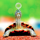 Slow Down #2 : A new approach to House music