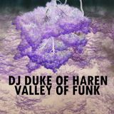 DJ Duke Of Haren - Valley Of Funk (Funky & Deep House Mix)