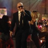 Pitbull Mini Mix