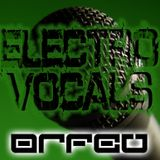 DJ Orfeu - Electro Vocals Mix