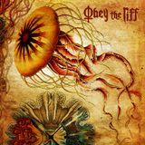 Obey The Riff #84 (Live at Villa Bota)