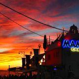 El Hornet - Cafe Mambo Ibiza 2014