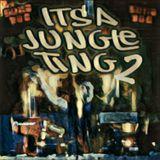 Its A Jungle Ting 2 - Dreadmas Mix (#KOATSY-065)