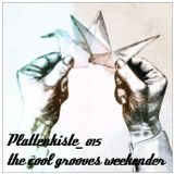 Plattenkiste_015 the cool grooves weekender