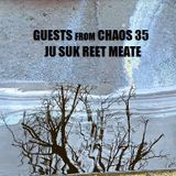 Guests From Chaos 35: Ju Suk Reet Meate