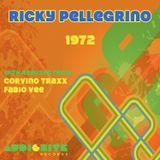 Ricky Pellegrino - 1972 ( Original Mix )