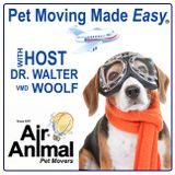 Episode 1: What is Air Animal?