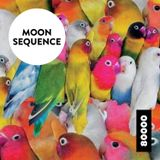 Moon Sequence Nr. 18 w/ tuco tuco !!