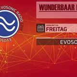 DJ-Set from the Wunderbaar Radioshow @ evosonic radio, 17.11.2017
