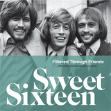 Sweet Sixteen - compiled by Filtered Through Friends