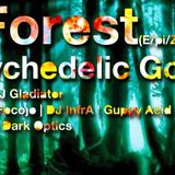E/pic Forest (Mitschnitt 10/14) feat. Infra