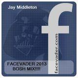 FACEVADER 2013 - Jay Middleton