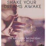 """Shake Your Dreams Awake"" Radio Show @ Innersound Radio (02-10-13)"