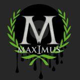 Max-I-muS @ Nachwerk Karlsruhe @ Subvibez/Italo/ Sebastian Groth