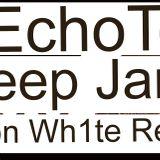In Deep Januar - EchoTom (John von Wh1te Re-mixed)
