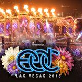 Martin Garrix @ kineticField, EDC Las Vegas, United States 2015-06-19