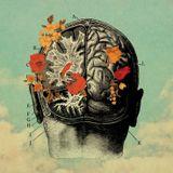 merged minds   VARZIM meets Oxid3