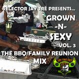 Grown-N-Sexy Vol. 3 - The BBQ/Family Reunion Mix
