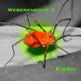 Weberknecht 2