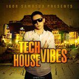 Tech House Vibes by DJ Samosud (Spring 2013)