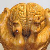 Nerven wie ein Wurm - Der Ursprung des Gehirns - DLF, 27.03.2016