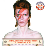 Jim8track's David Bowie DJ Tribute at Camp Bestival 2016