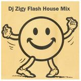 FLASH HOUSE mix by Dj Zigy