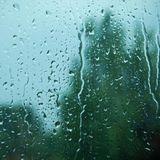 FEDE KEY NOVEMBER RAIN 2018