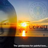 The gentleness for painful love.../STAY HIGH Mix