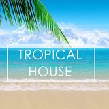 Norby Wilde - Tropical House Warm Up Miami Sunset