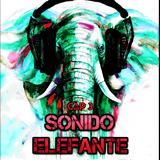 SONIDO ELEFANTE  Cap.3