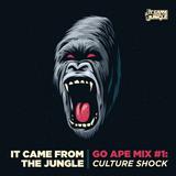#GoApe No.1 - SA Tour Mix by Culture Shock