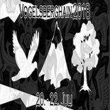 Der Gruppenleiter aka MC Jazz @ Vogelsberghain Rixfeld (21.7.18)