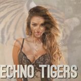 TECHNO TIGERS BY TAMARA CHETTY