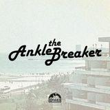 AnkleBreaker 18.11.2014 - RadioControl