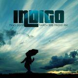 Tino Deep - Indigo (March 2015 Promo Mix)