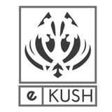 eKUSH electro/house DJ Mix